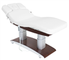 Electric Spa Facial Massage Treatment Table