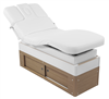 Electric Massage Spa Treatment Table Bed